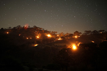 Small forest fires are pictured between pine trees at night at Sierra de Tejeda nature park, on a burnt mountain from El Collado mountain pass, near the town of Competa