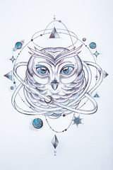Sketch of a wise owl on a white background.