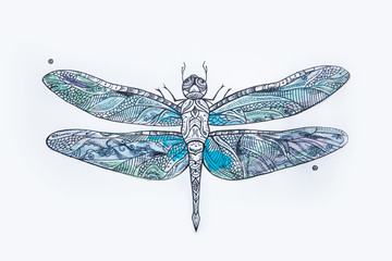 A sketch of a beautiful blue dragonfly on a white background.