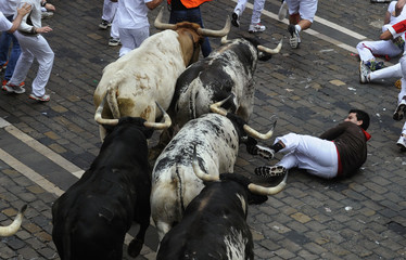 A runner falls in front of Torrestrella fighting bulls on Santo Domingo street during the first running of the bulls of the San Fermin festival in Pamplona