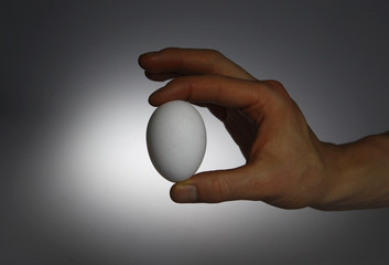 A picture illustration of a person holding a chicken egg taken in Berlin