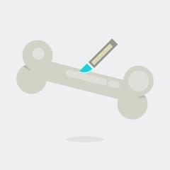 Bone vector illustration