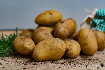New harvest - young raw potatoes uncooked
