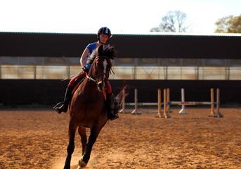 конный спорт.девушка со своим конем готовится к соревнованиям
