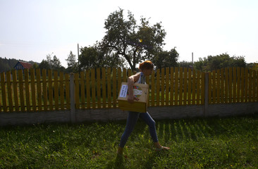 Member of the local electoral commission carries a voting box during a parliamentary election in the village of Zhukov Lug