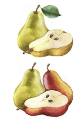 Hand-drawn watercolor isolated illustration of tasty yellow and red ripe pears on the white background.