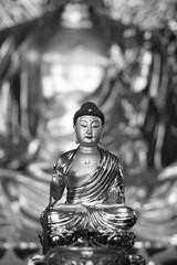 buddha china blue hair golden black white