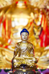 buddha china blue hair golden