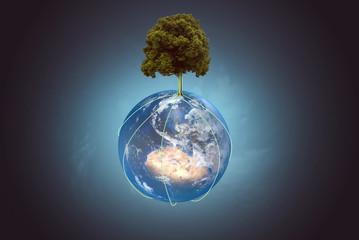 Baum wächst auf Globus