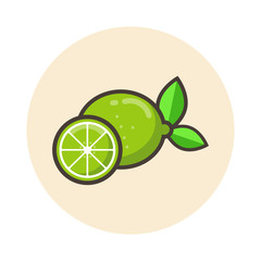 cartoon lime icon vector