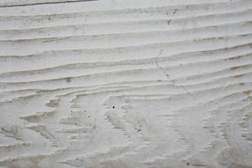 wood white background
