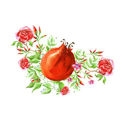 Watercolor vintage element, detail from the figure of plants, rose flower, dog rose, dog roseand fruit of pomegranate. Beautiful watercolor card