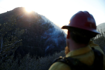 A lookout with the Kings River Hotshots keeps watch on the fire while crews build a fire line to protect homes in the Deer Lodge Park area during the Pilot Fire in San Bernardino county near Lake Arrowhead, California