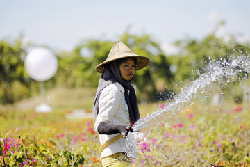 A woman waters flowers near the main venue for the Association of Southeast Asian Nations (ASEAN) summit in Naypyitaw