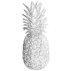 Pineapple created from lines. Vector illustration