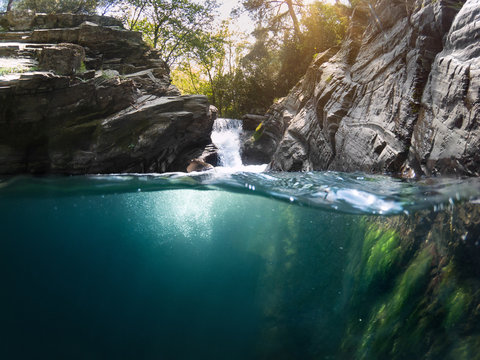 Under water in forest