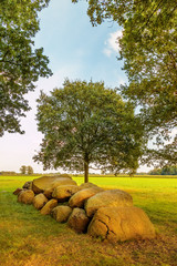 Ancient Dutch megalithic tomb dolmen (hunebed)