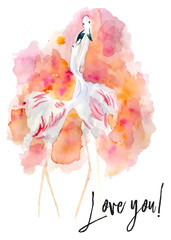 Watercolor card with  flamingo