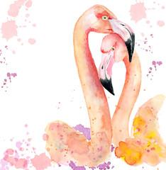 Watercolor loving couple of pink flamingos