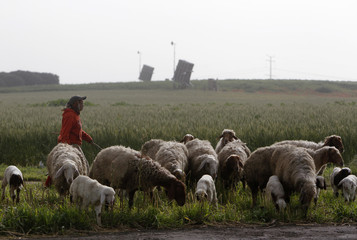 A Bedouin girl herds sheep as Iron Dome launchers are seen in the background in a field near the southern city of Ashdod