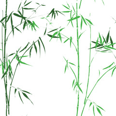 Bamboo oirental asian green seamless pattern vector background
