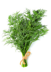 Bunch of dill isolated vertically.
