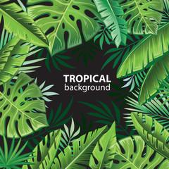 Tropical leaves on black