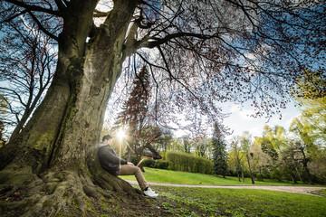couple sits under tree on sunset