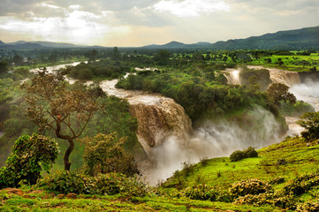 Blue Nile Falls, Ethiopia, Africa Wall mural