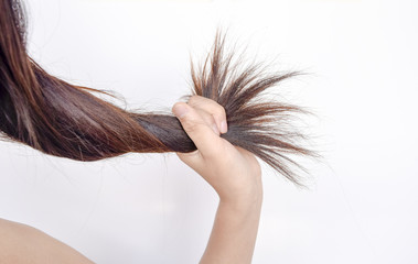 Combing with brush and pulls long hair.Daily preparation for looking nice, Long Disheveled Hair,Holding Messy Unbrushed Dry Hair In Hands.Hair Damage,Health And Beauty Concept,unhappy with dry hair