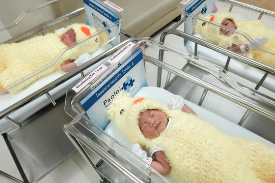 Newborn babies wearing chicken costumes to celebrate the Chinese New Year of Rooster are pictured at the nursery room of Paolo Chockchai 4 Hospital, in Bangkok