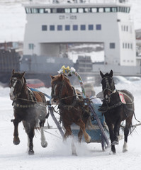 A Russian Troika, a three-horse-drawn sledge, competes on the frozen Yenisei river during the 42nd Ice Derby amateur horse race, with an abandoned ferry in the background, near the settlement of Novosyolovo