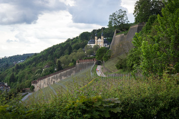 Idyllic view of vineyards, Würzburg, in South Germany - Stock image