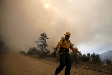 Chon Bribiescas, 59, of the U.S. Forest Service walks away from the edge of a wildfire in Heart Bar in the San Bernardino National Forest near Big Bear Lake