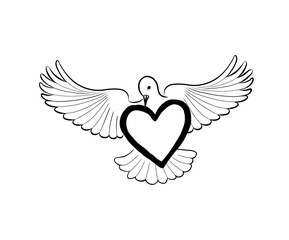 Love heart brought by flying bird dove. Valentine day greeting card