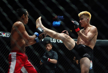 Mixed Martial Arts - MMA - ONE Championship: Ascent to Power
