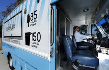 Arctic Zero Chief Executive Amit Pandhi poses in his healthy frozen dessert ice cream truck in San Diego