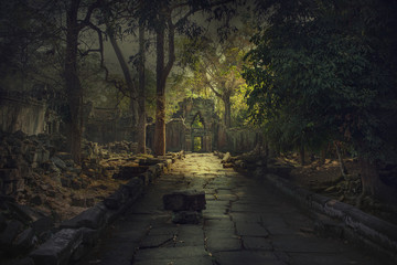 Ancient,abandoned temple of Angkor Wat, Cambodia