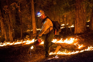 "Fulton Hotshot Justin Speakman lights a controlled burn on the so-called ""Rough Fire"" in the Sequoia National Forest, California"