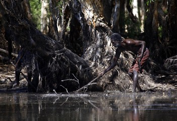 Australian Aboriginal hunter Roy Gaykamangu of the Yolngu people uses a stick to try and find a crocodile he is hunting in a billabong near the 'out station' of Yathalamarra, located on the outksirts of the community of Ramingining in East Arnhem Land