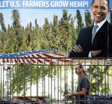 David Bronner tends to his industrial hemp as he stages a protest inside a steel cage, in front of the White House in Washington
