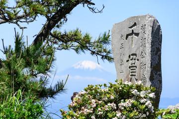 千貫松 富士山 松 葉山