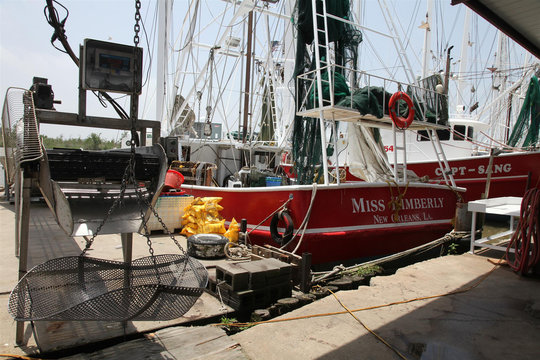 Shrimp conveyors and scales and shrimp boats sit idle at D&C Seafood in Venice