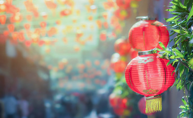 Poster de jardin Chine Chinese new year lanterns in chinatown