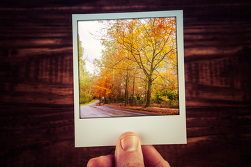 Hand holding polaroid photograph of rural road among autumn trees with golden foliage. Alfred Nicholas Memorial Gardens, Melbourne, Australia. Travel memories of good times with copy space