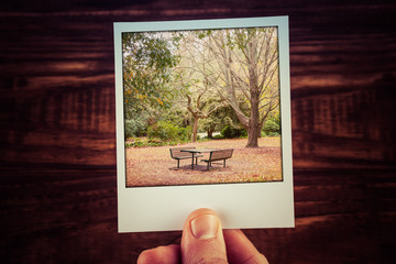 Male hand holding polaroid photo of autumn scene - empty picnic table, foliage, and bare trees with copy space. Travel memories of good old times