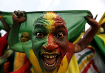 A Mali supporter painted in the colours of the country's national flag cheers as the team arrives to warm up before their African Cup of Nations soccer match against Guinea in Mongomo