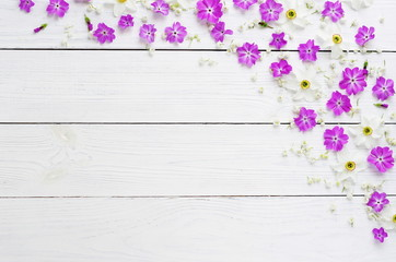 Pattern of spring flowers on a white wooden background. top view. flat lay. Holiday concept. Copy space