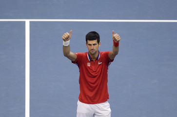 Serbia's Djokovic celebrates defeating Czech Republic's Berdych during their Davis Cup World Group final tennis match in Belgrade