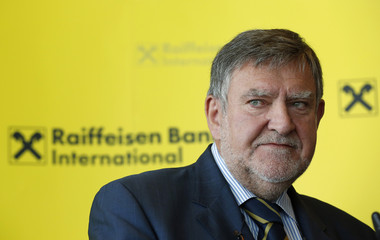 Raiffeisen Bank International's Chief Executive Herbert Stepic addresses a news conference in Vienna